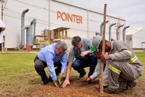 001 - Pointer