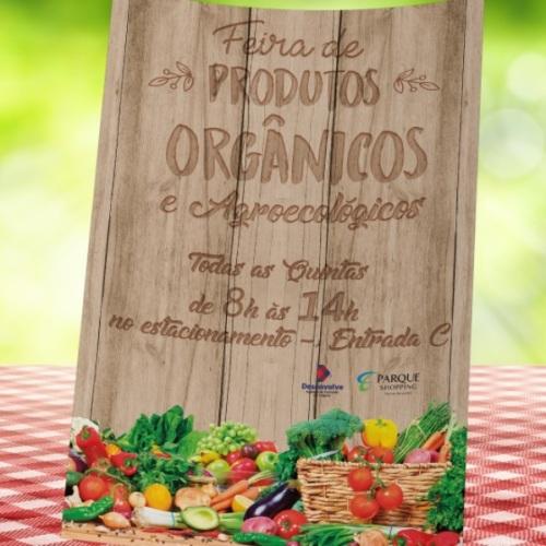 11352318092017_feira_de_organicos